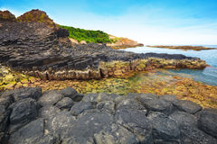Giant's Causeway. Stock Images