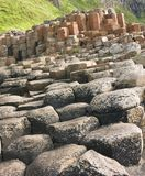 Giant's Causeway. Hexagonal basalt columns, a natural volcanic rock formation at the Giant's Causeway, County Antrim, Northern Ireland stock images