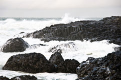 The Giant's Causeway. In North Ireland Royalty Free Stock Photo