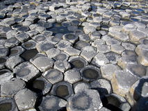 Giant's Causeway. County Antrim, Northern Ireland, UNESCO World Heritage Site Royalty Free Stock Photography