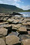 Giant's Causeway. The Giant's Causeway in Northern Ireland Royalty Free Stock Images