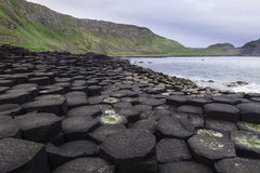 Giant's Causeway along the Northern Ireland coast. According to legend, the interlocking basalt columns are the remains of a causeway built by legendary giant royalty free stock photo