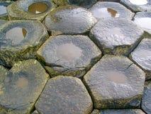 Giant`s Causeway, Antrim Co., Northern Ireland, UK, Europe stock photography