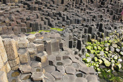 Giant's Causeway. The Giant's Causeway is an area of about 40,000 interlocking basalt columns, the result of an ancient volcanic eruption. It is also known as Royalty Free Stock Photography