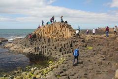 Giant's Causeway. The Giant's Causeway is an area of about 40,000 interlocking basalt columns, the result of an ancient volcanic eruption. It is also known as stock photos