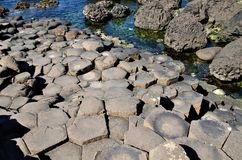 Giant`s Causeway Royalty Free Stock Photos