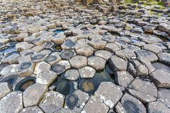 Giant`s Causeway, N. Ireland. Antrim/N. Ireland - May 30, 2015: Giant`s Causeway, a natural wonder produced by volcanic, hexagonal basalt rock flowing into the stock images