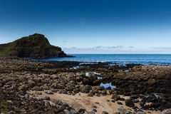 Giant's Causeway, Northern Ireland Royalty Free Stock Image