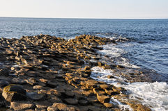 Giant's Causeway (Northern Ireland) Stock Photo