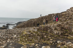 Giant's Causeway - Northern Ireland Royalty Free Stock Images