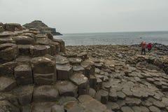 Giant's Causeway - Northern Ireland Royalty Free Stock Photo