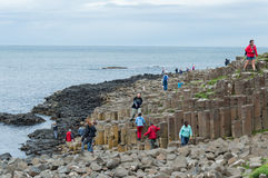 Giant s causeway Royalty Free Stock Photography