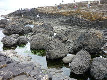 Giant's Causeway. A popular tourist destination in Northern Ireland royalty free stock photos