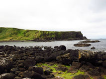 The Giant's Causeway Royalty Free Stock Image