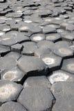 Giant's Causeway Stones Stock Images