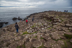 Giant's Causeway volcanic formations Royalty Free Stock Photography