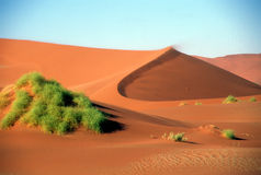Giant sand dunes in desert Stock Photos
