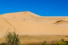 Te Paki Stream - Giant Sand dunes royalty free stock photo