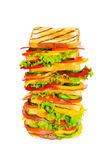 Giant sandwich isolated on the white Stock Photo