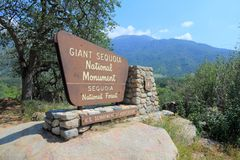 Giant Sequoia National Forest Sign Stock Photo Image Of