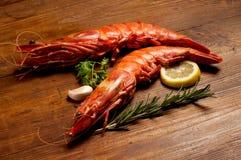 Giant shrimp Stock Image