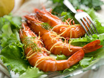 Giant shrimp over lettuce Royalty Free Stock Photo
