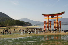 Giant shrine on Miyajima island, Japan. Giant water shrine on Miyajima island near Hiroshima, Japan, it´s reachable by foot during the ebb, crowd of people Stock Photos