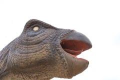 Giant size Psittacosaurus. Head of a giant size Psittacosaurus Stock Image