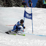 Giant Slalom in Elm Royalty Free Stock Image