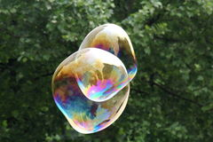 Giant soap bubbles Royalty Free Stock Image