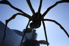 The giant spider Stock Photography
