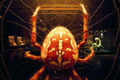 Giant spider inside hall of Naturkundemuseum Royalty Free Stock Photo