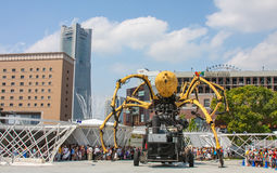 Giant spider. Royalty Free Stock Photos