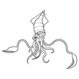 Giant squid illustration Royalty Free Stock Photography