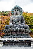 Giant statue of Buddha in the Sinheungsa Temple. Buddha in the Sinheungsa Temple at Seoraksan National Park, South Korea Stock Photo