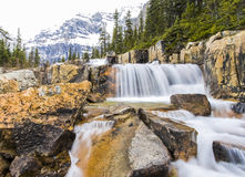 Giant Steps Waterfalls in Banff National Park Royalty Free Stock Photography