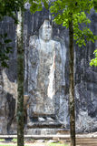 The giant stone carved standing Buddha statue at Buduruwagala, near Wellawaya in central Sri Lanka. Royalty Free Stock Photos