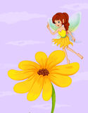 A giant sunflower beside a fairy Stock Image