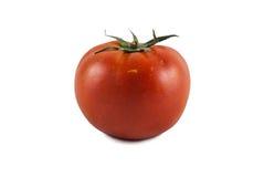 Giant Tomato Isolated Stock Image