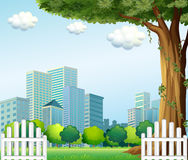 A giant tree near the wooden fence across the tall buildings Royalty Free Stock Photos