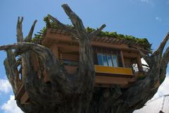 Giant Treehouse. Super large tree house clubhouse stock photos