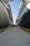 Between the giant, two cruise ships Royalty Free Stock Image