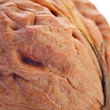 Giant walnut background. Giant walnut macro view background Stock Images