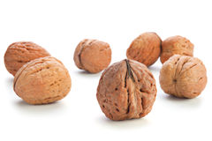 Giant walnut group. Isolated on white Royalty Free Stock Photography