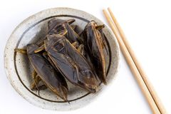 Giant Water Bug is edible insect for eating as food Insects deep-fried crispy snack on plate and chopsticks on white background,. It is good source of protein stock image