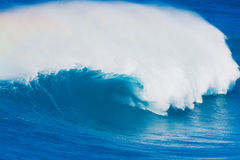 Giant Wave Stock Photography