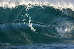 Giant wave. Crashing down in shallow waters of hawaii Stock Photos