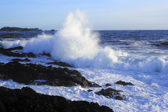 Giant wave crushing on a rocky beach. On Vancouver Island stock photos