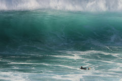 Giant wave and a lone surfer. Huge wave breaking on small surfer Stock Photography