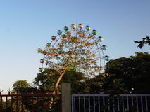 Giant wheel in Mandalay. Ferris wheel behind a tree Stock Photos